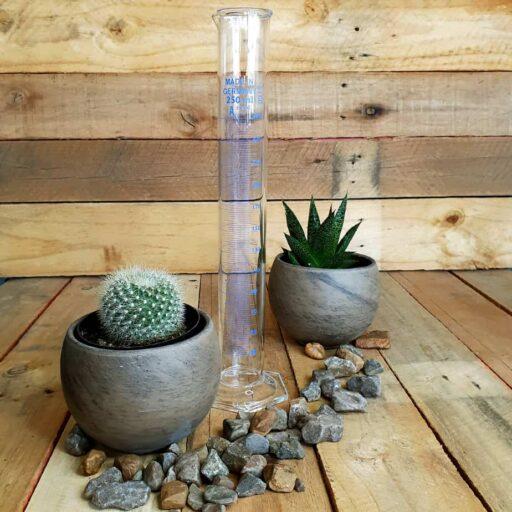Glass Cylinder 250ml