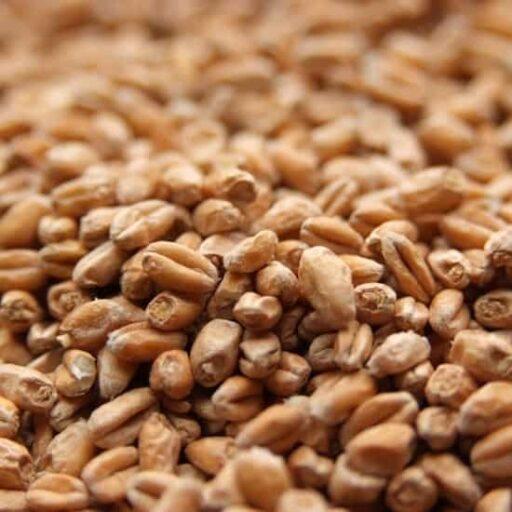 Weyermann® Pale Wheat malt